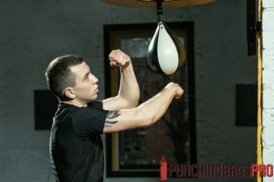 speed-bag-punching-bag-buying-guide-punching-bags-pro-singapore
