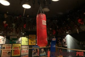 standard-punching-bag-buying-guide-punching-bags-pro-singapore