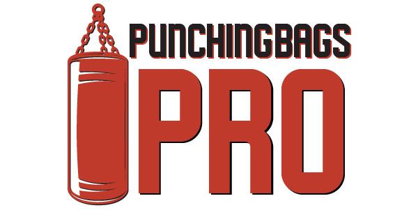 punching-bags-pro-singapore-logo-600x300